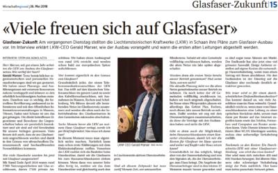 Glasfaser-Ausbau Glasfasern Installateure Glasfaser Provider Liechtenstein